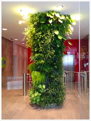 Faites entrer la nature chez vous avec le mur végétal
